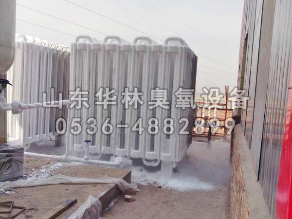 山西襄汾热力厂2台40KG氧气源脱硝现场